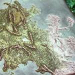 The Dark Eye Aventurien map detail on fabric panel